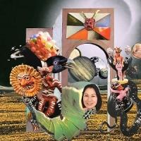Deerhoof - Actually, You Can (Album Review)